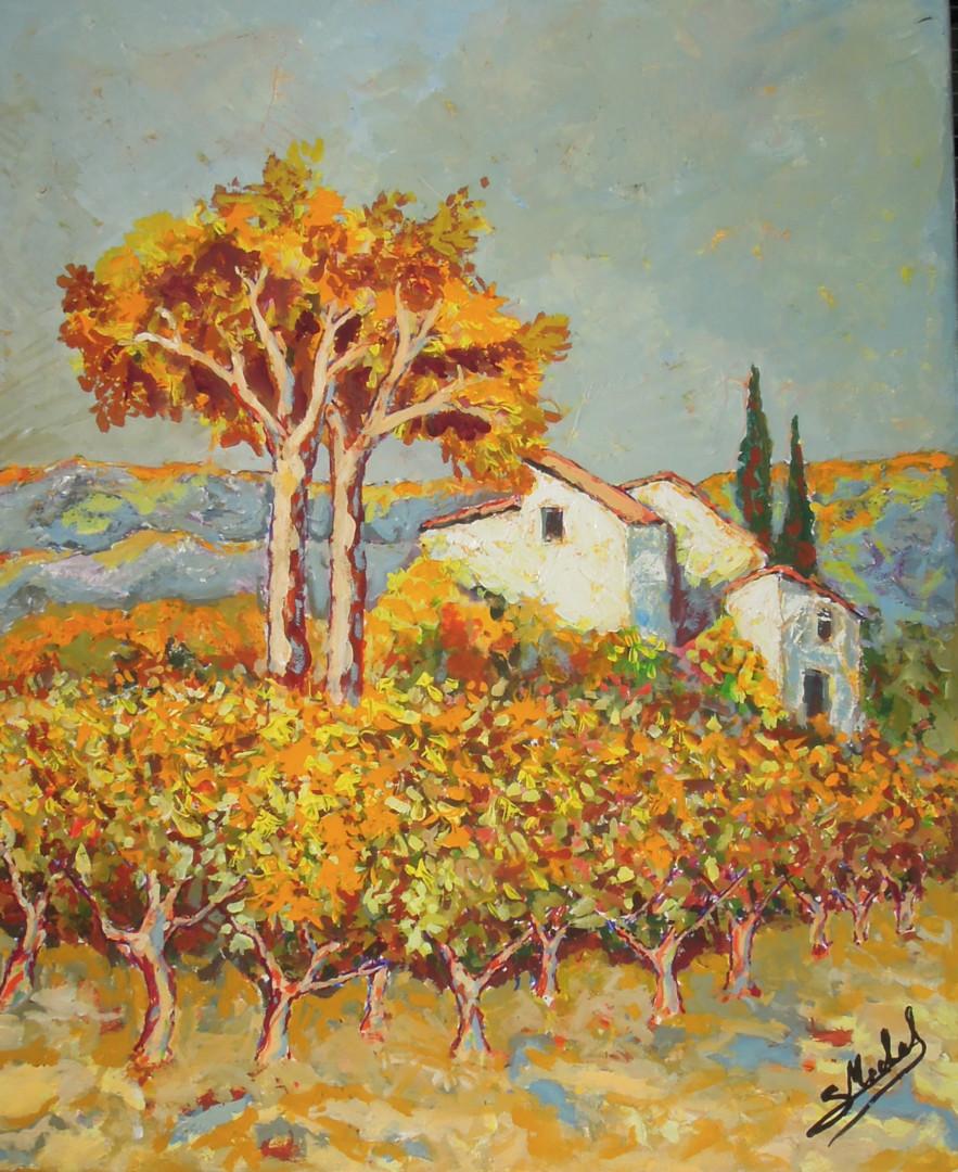 Gérard MICHEL - vignes en automne